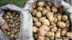 Sacks of potatoes