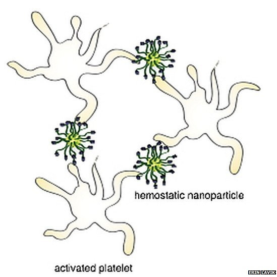 This is a schematic of hemostatic nanoparticles linking with blood platelets.