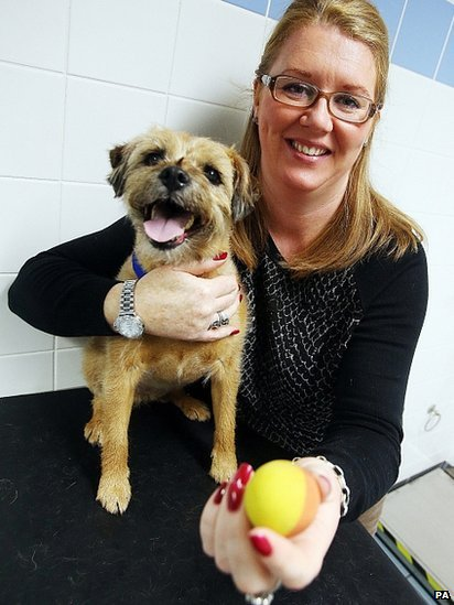 Trixie the Border Terrier and owner Melanie Pounder