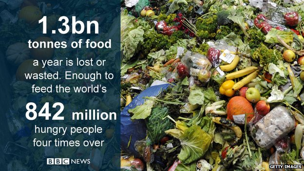 Around 1.3bn tonnes of food is lost or wasted each year - enough to feed millions
