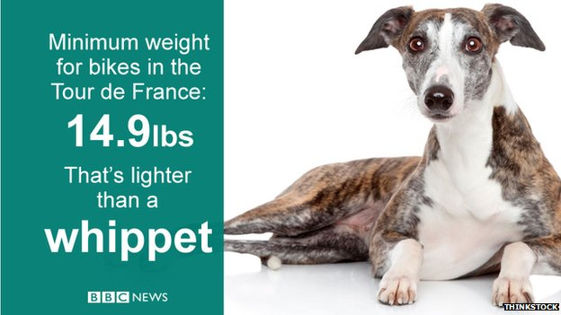 The minimum weight for bikes in the Tour de France is lighter than a whippet