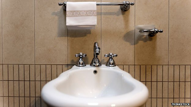 Bidet with towel rail
