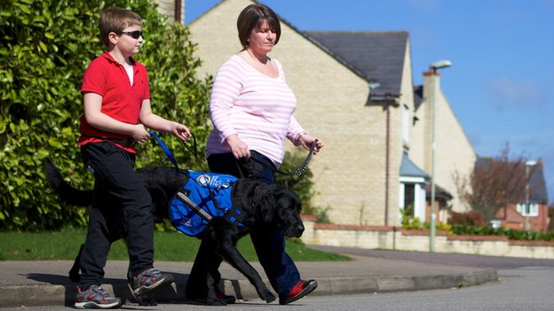 Autism dog crossing the road with teenage boy and his mum
