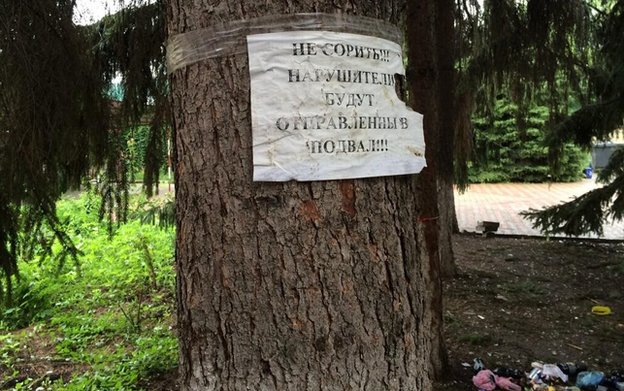"A tree outside the basement with a sign: ""Don't litter or you'll be sent to the cellar!"""