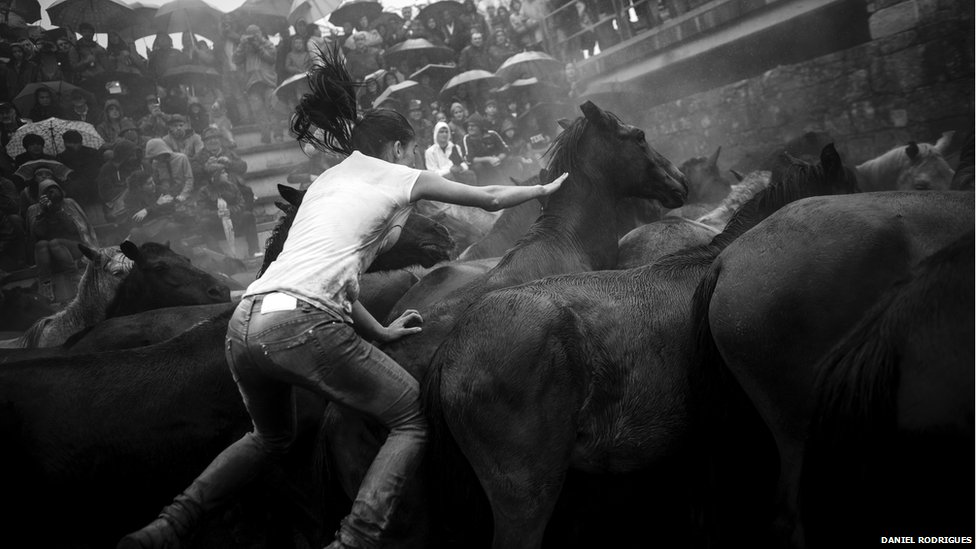 Women are also involved in the round-up