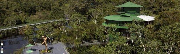 Jungel near Manaus