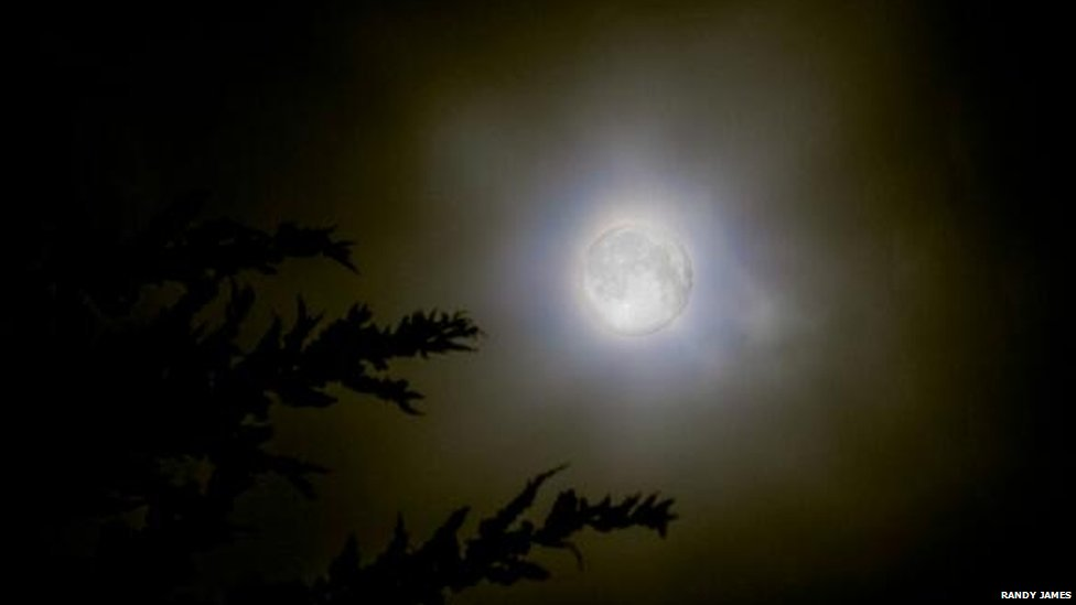 Supermoon in California. Photo: Randy James