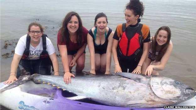 Five girls with blue fin tuna