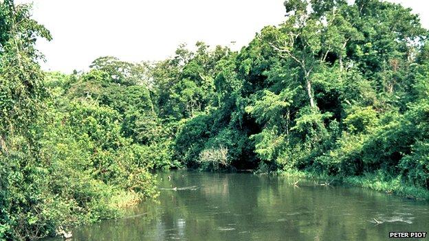 The Ebola river (1976)