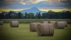 A low yellow sky over darkened mountains in the background. Hay bails staggered in a lush green field, green fields and trees fall behind.