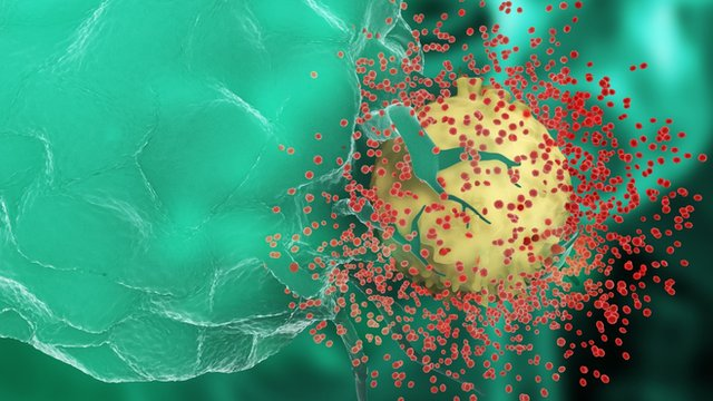 Early HIV drugs 'may not stop virus'