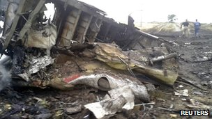 The site of a Malaysia Airlines Boeing 777 plane crash is seen in the settlement of Grabovo in the Donetsk region, on 17 July 2014.