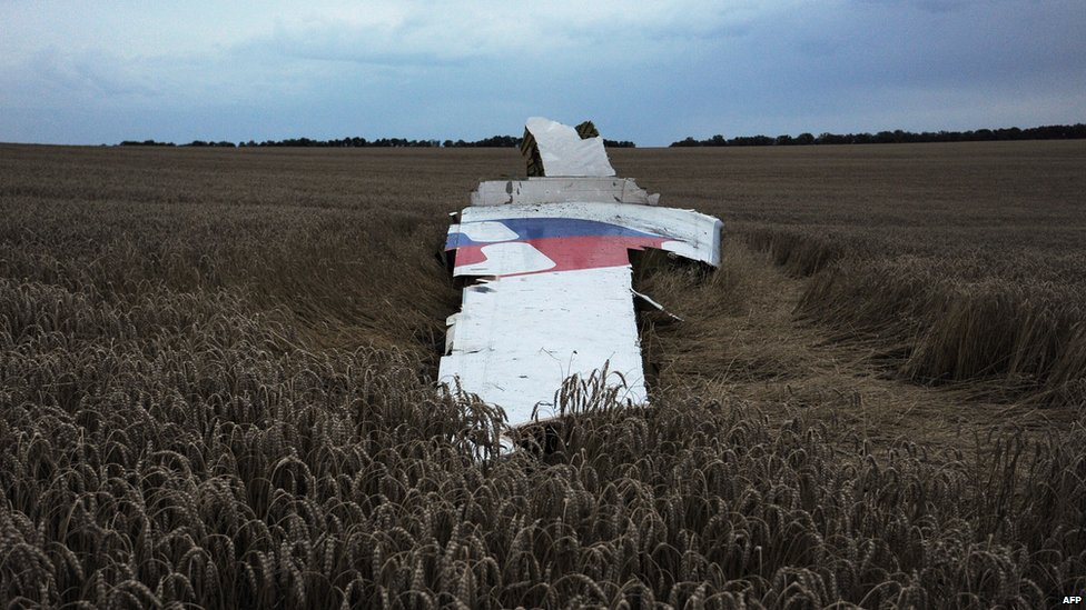 A picture taken on 17 July 2014 shows the wreckages of the Malaysian Airliner carrying 298 people from Amsterdam to Kuala Lumpur after it crashed, near the town of Shaktarsk, in rebel-held east Ukraine