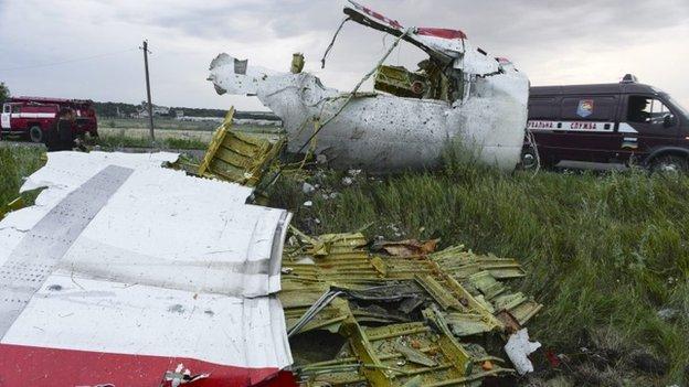 Plane debris (17 July 2014)