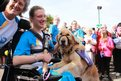 Baton bearer Zoe MacLean strokes assistance dog as crowds cheer in background