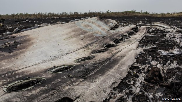 Debris from the Air Malaysia plane crash lies in a field in Grabovka, Ukraine