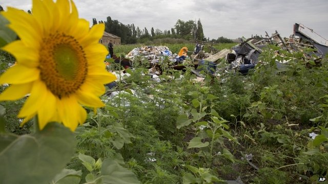 Scene of MH17 crash