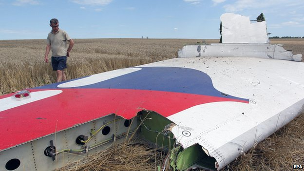 Man inspects debris at the main crash site of the Boeing 777 Malaysia Airlines flight MH17 on 20 July 2014