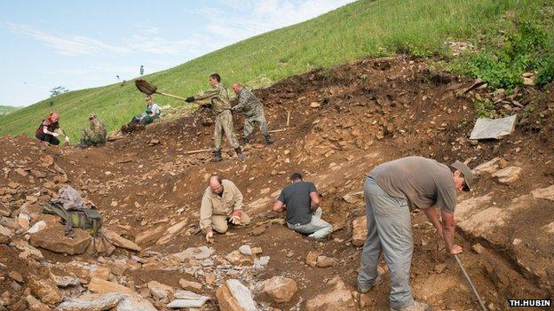 Excavation of bonebed in Kulinda dinosaur locality, Jurassic, southeastern Siberia