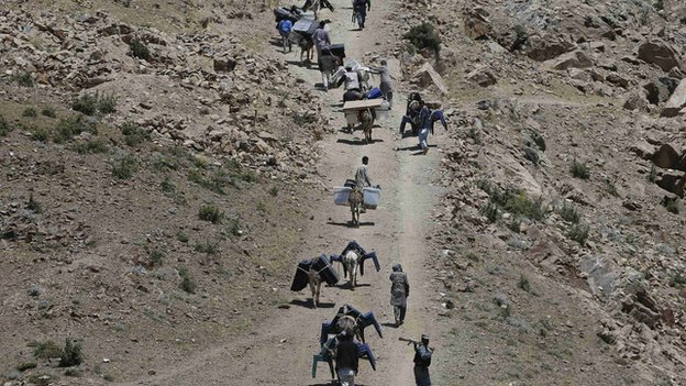 Election workers used donkeys in some remote parts of Afghanistan to transport ballot boxes