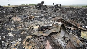 The wreckages of the Malaysia Airlines jet (18 July 2014)