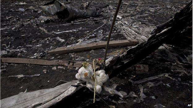 A teddy bear and a flower among the charred wreckage of a plane