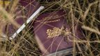 EU passport in the debris from MH17