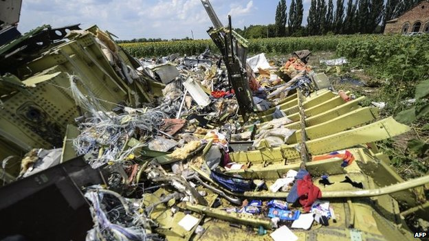 The crash site of the downed Malaysia Airlines flight MH17, in a field near the village of Grabove, in the Donetsk region, 23 July 2014