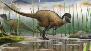 Reconstruction of Kulindadromeus zabaikalicus, from the Jurassic of Siberia, in its natural