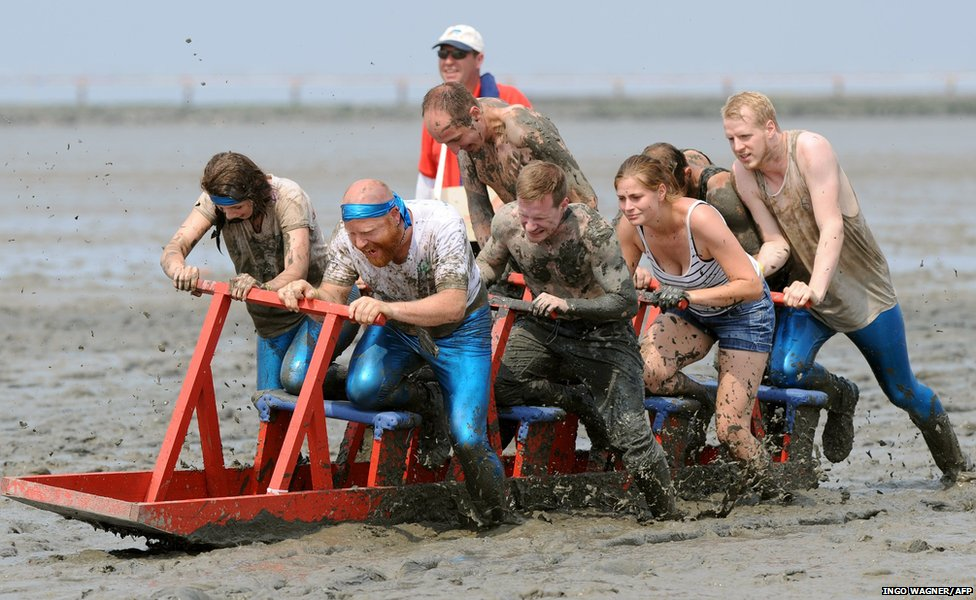 Participants of the mudflat sledge championships