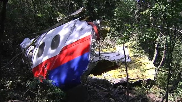 Malaysia Airlines plane wreckage