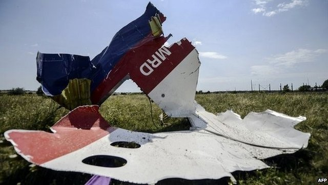 Debris from Flight MH17