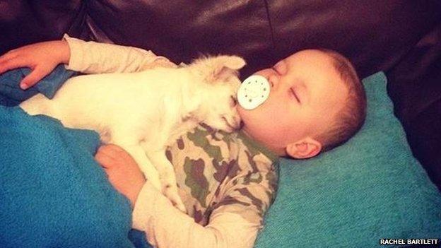 Harley Bartlett with his dog Jasmine