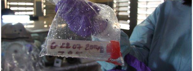 Ebola sample, Guinea