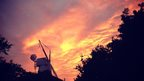 Pink, orange and yellow sky over a large windmill surrounded by trees, all darkened in the shadow of the sunset.