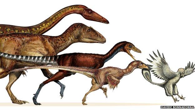 Dinosaur lineage