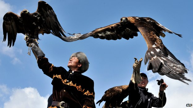 Traditional Kyrgyz berkutchi (eagle hunter) launches his bird in village of Tyup, May 2011