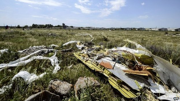 Debris from flight MH17 lays untouched in a field in eastern Ukraine - 25 July 2014
