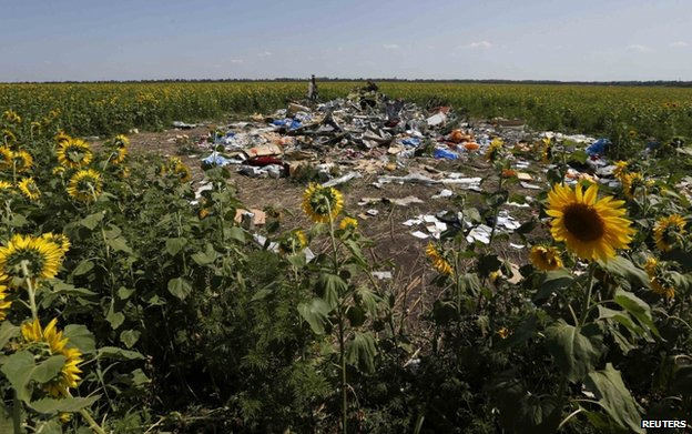 Debris at the site of the flight MH17 crash in eastern Ukraine, 26 July