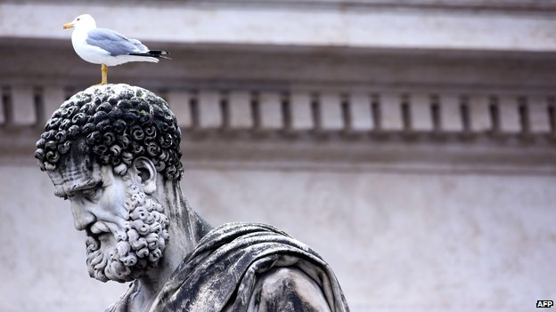 A gull stands on a stained statue of St Peter