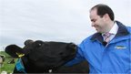 The CEO of Dairymaster smiling at a cow