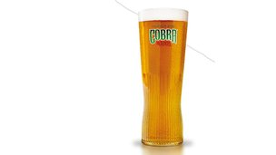 A pint of Cobra