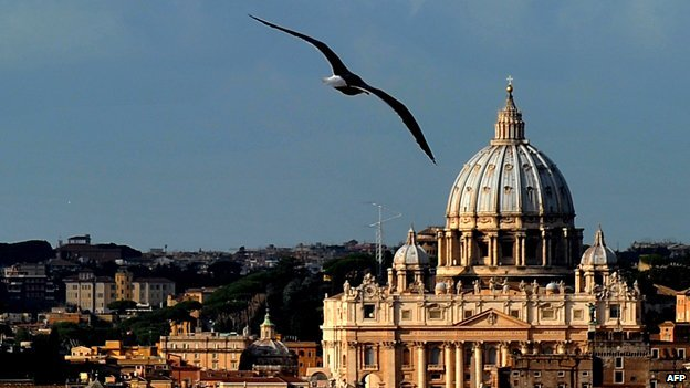 A gull flying across the Vatican skyline
