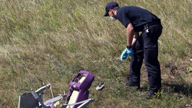 An investigator examines the area of the Malaysia Airlines Flight MH17 crash site, near the village of Hrabove, 100 km from Donetsk, Ukraine (1 August 2014)