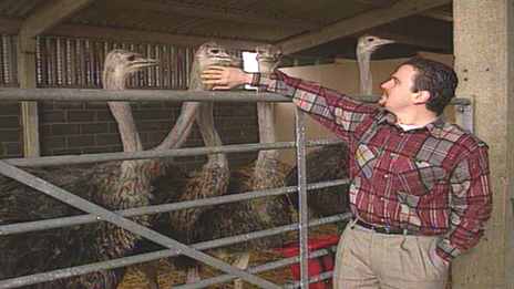 Martin Evans at his ostrich farm