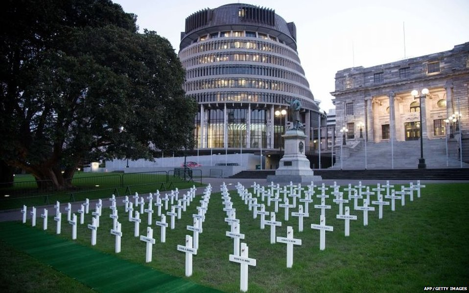 100 white crosses outside New Zealand parliament
