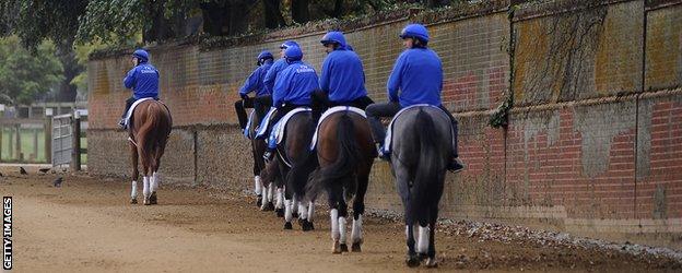 Godolphin based racehorses
