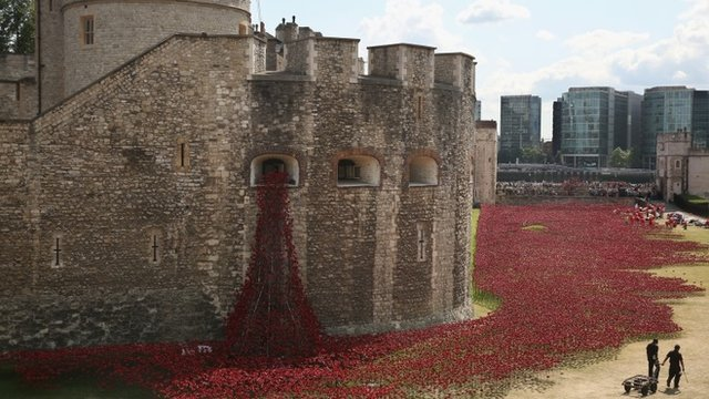 Google Images Tower of London Poppies Tower of London Poppy