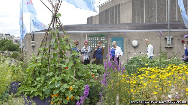 Southbank Centre's Roof Garden on Queen Elizabeth Hall