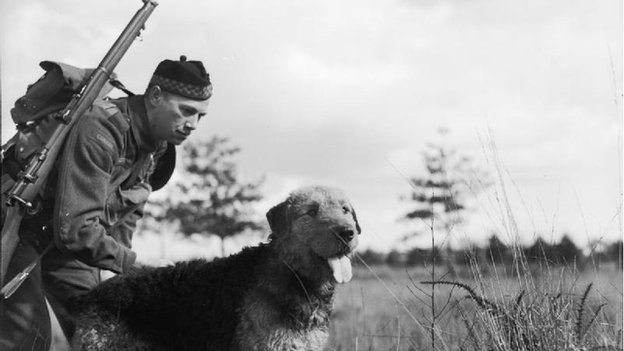 Soldier with airedale, 1940